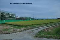 20129dsc_0055
