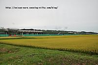 20129dsc_0168
