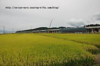 20129dsc_0225