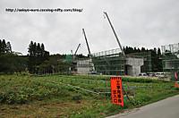 20129dsc_0350