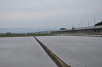 20135_102
