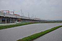 20135_135