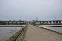 20135_251
