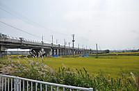 20139_030