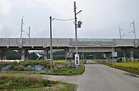 20139_217