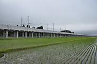 20146_121