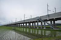20146_135