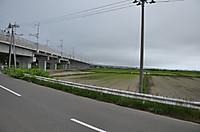 20146_168