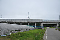 20146_184