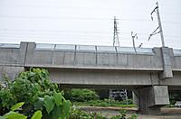 20146_271
