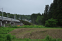 20146_343